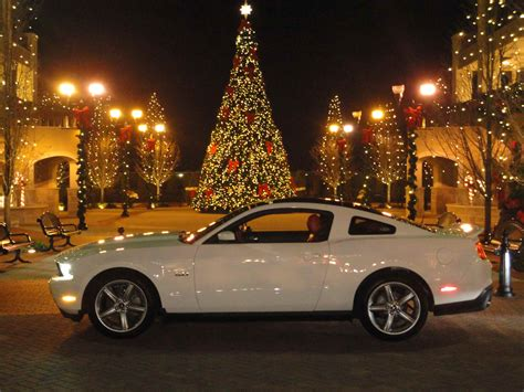 day late     gt christmas photo  mustang source ford mustang forums