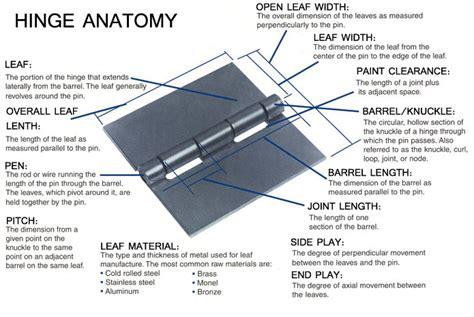 Hinge Anatomy