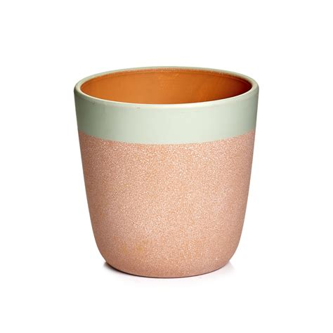 wilko terracotta plant pot 15cm at wilko com wilko terracotta plant pot sage 11cm at wilko com