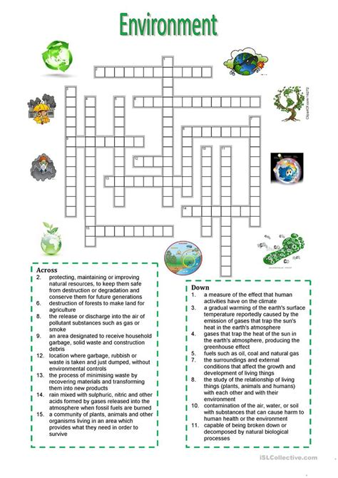 environment crossword puzzle worksheet free esl