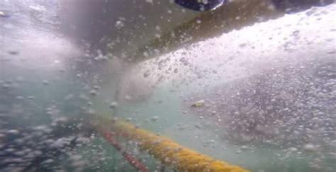 gabbia squali squalo attacca gabbia per sub sudafrica