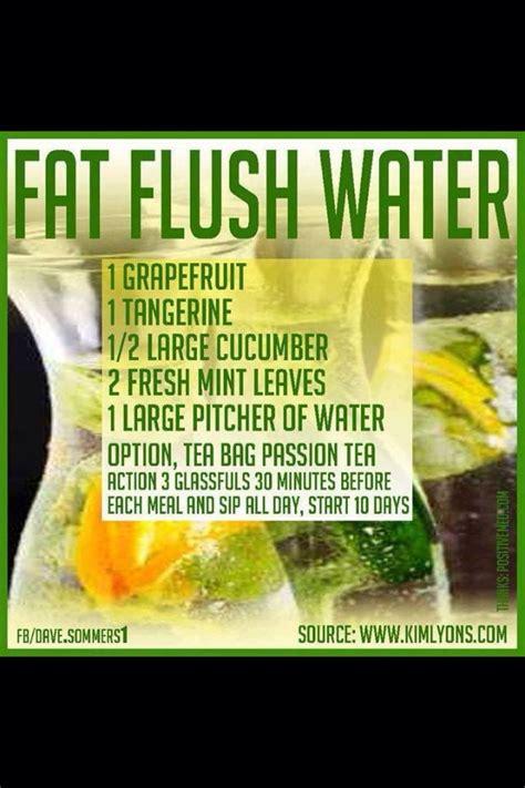 Flush Detox by Detox Detox Detox Gt 23 Flush Detox Recipes Trusper