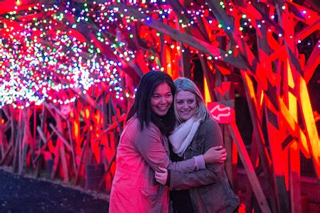 la zoo lights hours tickets la zoo lights happy hour 21 only