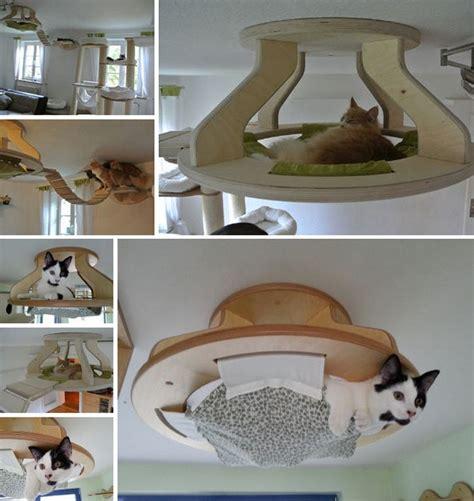 How To Make Cat S Claw Drink For Detox by Die 25 Besten Ideen Zu Katzenkratzbaum Auf