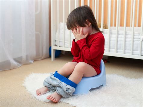how to potty 5 potty problems and how to solve them
