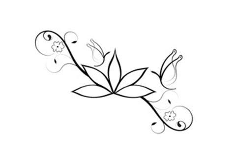 fiori di loto e farfalle cerca immagini da cla84