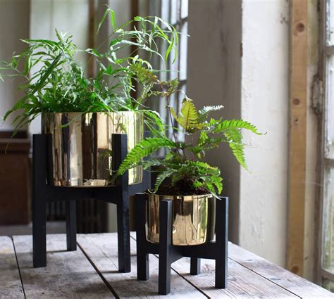 gold planter   stand   forest