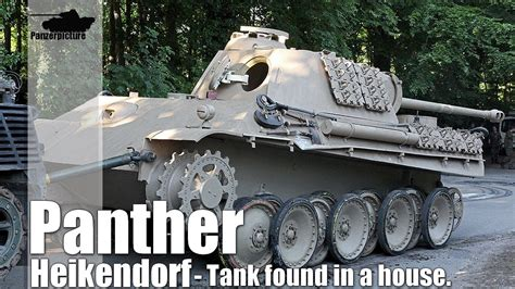 Finding In Germany Panther Found In A House In Germany Heikendorf Panther