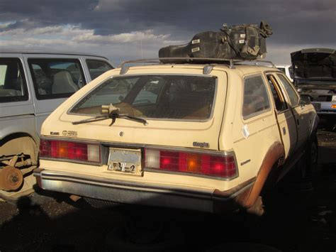 subaru eagle so many eagles in colorado but not all can fend off the