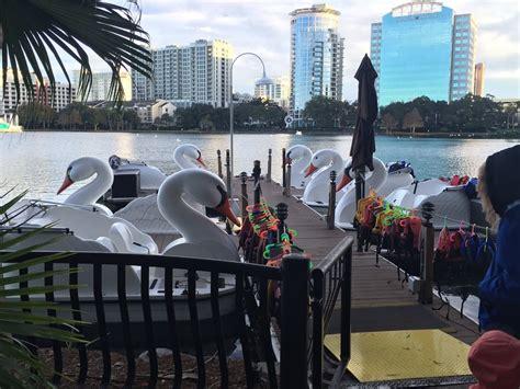 swan boats orlando fl swan boat rentals boating orlando fl photos yelp