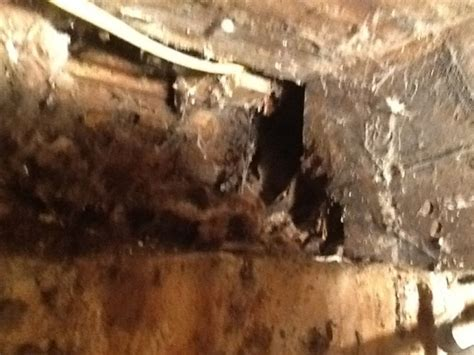 Replacing Rotted Sill Plate In 120 Yr Old Home   Building
