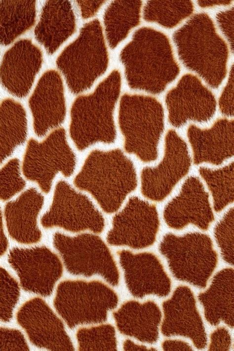 giraffe animal print wallpaper  iphone  android