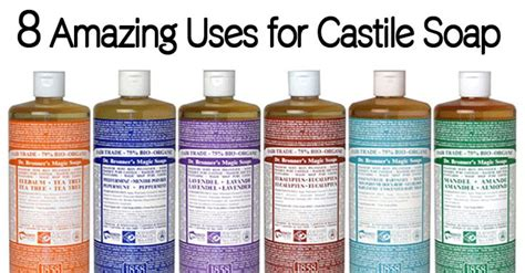 my lovehate relationship with castile soap accidentally 17 best images about go toxin free noodor com on