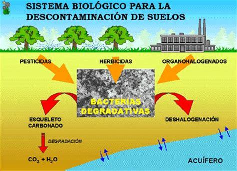 Spiritual Detox Pdf by Contaminaci 243 N Medio Ambiental Spiritual Detox