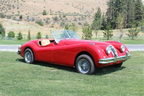 jaguar kitten 1956 jaguar xk140 roadster replica kit car xk120 xk