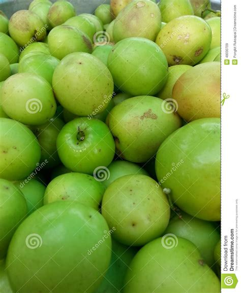 apple thailand monkey apple stock photo image 48030709
