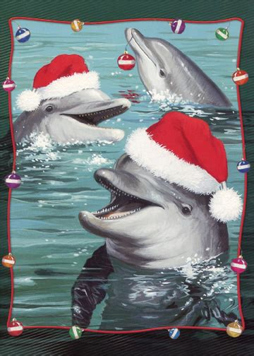 dolphins  santa hats warm weather christmas card  red farm studios