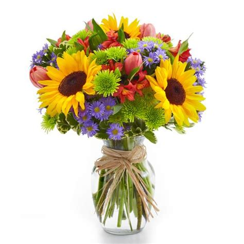 Send Roses by Bouquet Of Sunflowers At Send Flowers