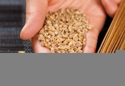whole grains easy to digest whole grain 5 seed crackers recipe