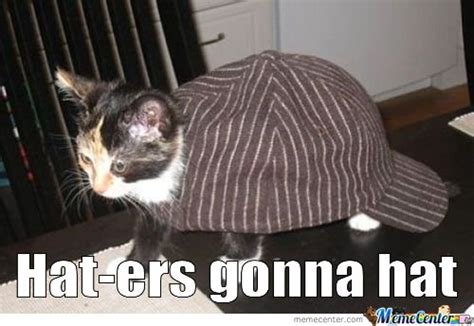 Hat Meme - cat in the hat memes best collection of funny cat in the