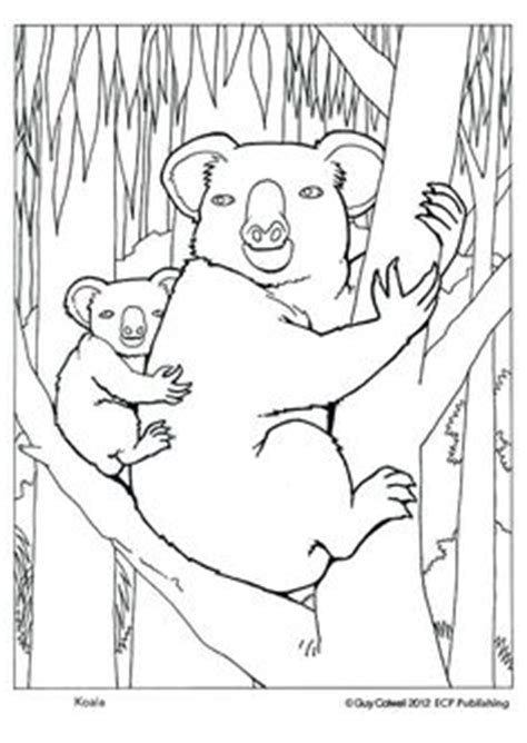 christmas koala coloring page 1000 images about colouring sheets on pinterest
