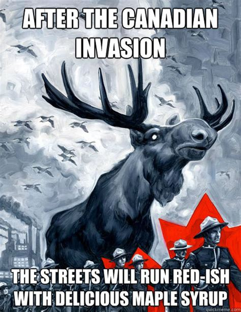 Canadian Moose Meme - we hope you like these memes for canada day eh
