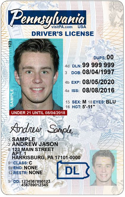 pennsylvania license excellent pa drivers license template pictures inspiration exle resume ideas