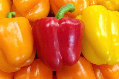 colored peppers produce geek eat smart shop healthy