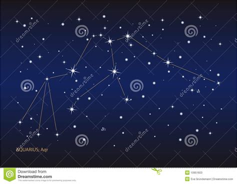 aquarius constellation stock vector image of