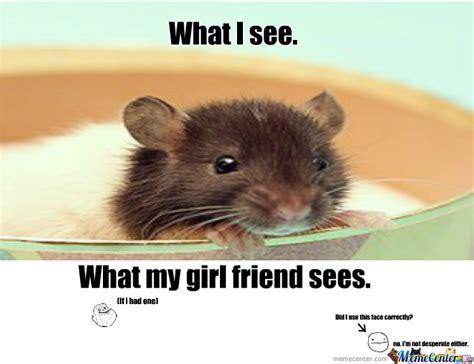 Mouse Meme - mice by winterthewolf meme center