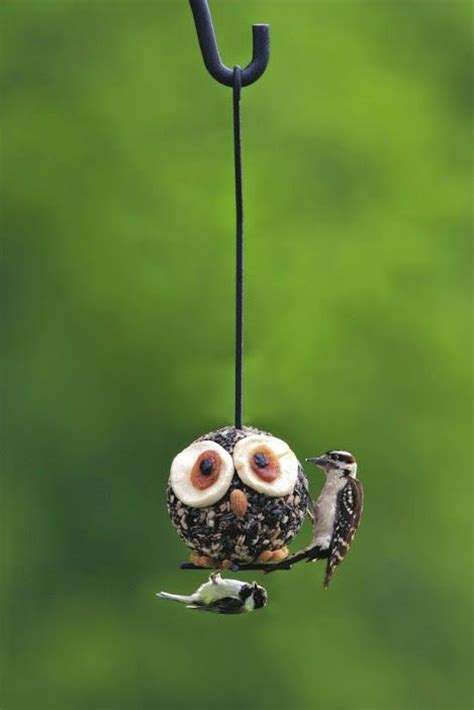 owl bird bird feeders and garden gifts on pinterest