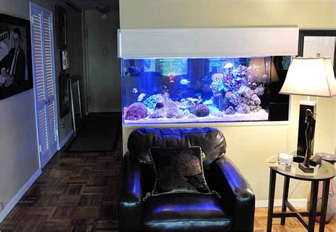 home aquariums  decorating elements   york times