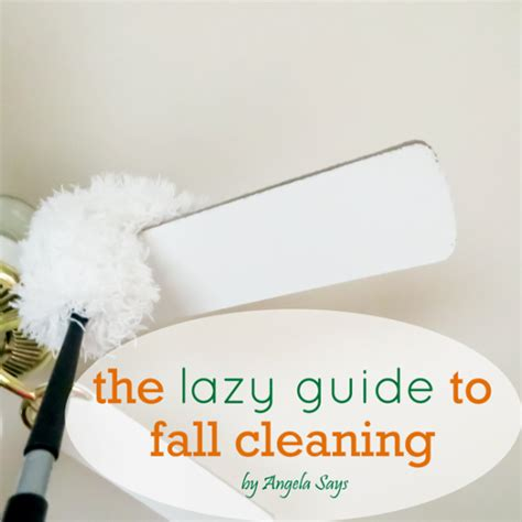 cleaning for lazy free fall cleaning list