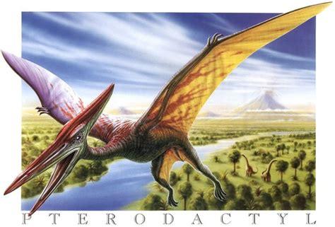 rettili volanti preistorici tutte le curiosit 193 sui dinosauri e sulla preistoria page 12
