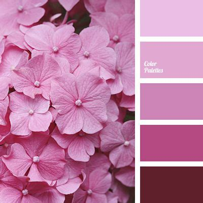 bright crimson color 17 best ideas about pink color palettes on