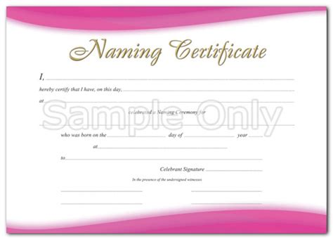 Naming A Guardian For Your Child Template by Naming Certificate Generic Pink A4