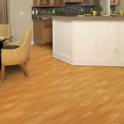 Best Bamboo Flooring Bamboo Flooring Pros And Cons Vizimac