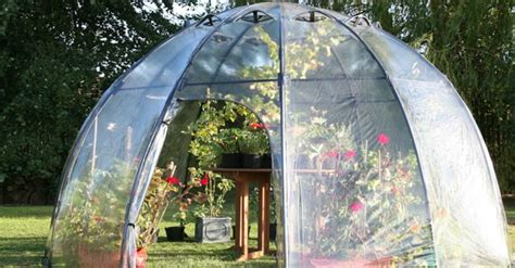 sunbubble greenhouse   mini eden   backyard