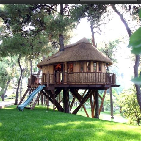 cool tree houses cool tree house cool tree houses pinterest
