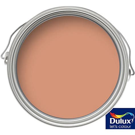 front door paint homebase dulux tuscan terracotta matt emulsion colour paint