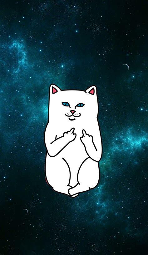 cat ripping wallpaper ripndip iphone wallpaper ripndip middle finger cat