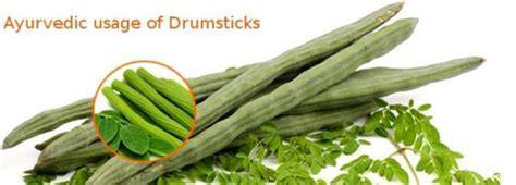 Drumsticks For Health by Drumstick Tree Leaves Benefits For Health Recipes Ayurveda