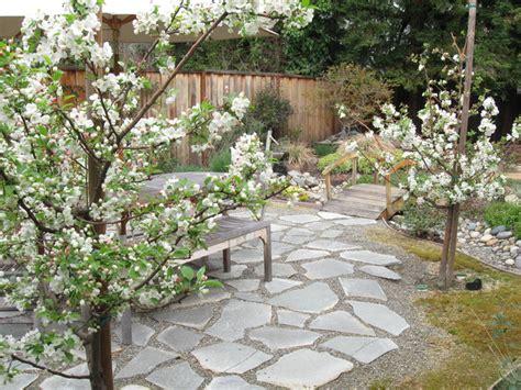 crabapple tree bosque in bloom patio san