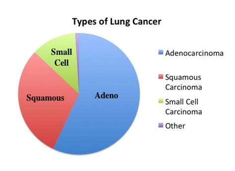 types of cancer lung cancer classification and incidence moose and doc