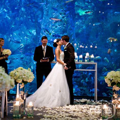 wedding reception new aquarium 75 ways to throw a luxury wedding on a budget bridalguide