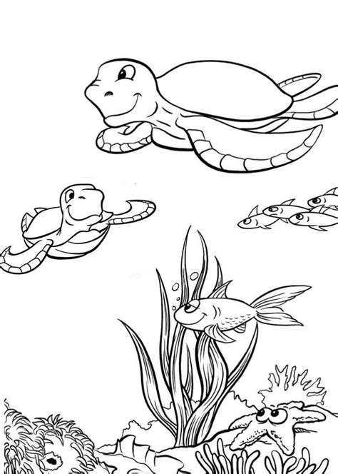 printable coloring pages sea turtle coloring pages to and print for free
