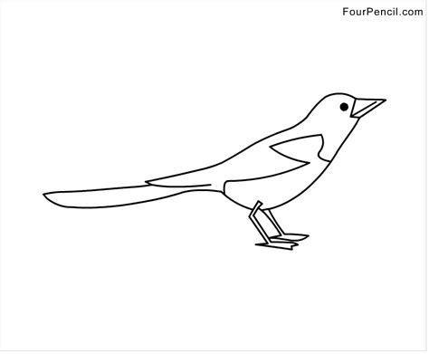 magpie bird coloring page free magpie drawings