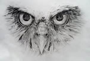 owl face pencil drawing in progress artwork by megan