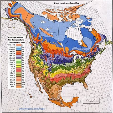 weather map usa and canada climate maps united states and canada free printable maps