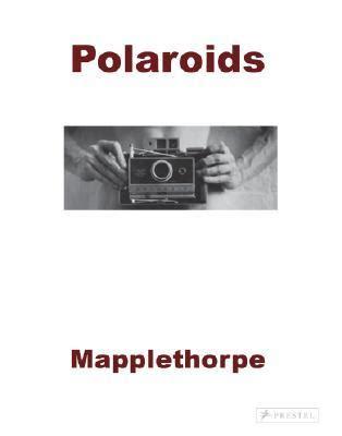 robert mapplethorpe polaroids 3791348701 robert mapplethorpe polaroids www pixshark com images galleries with a bite